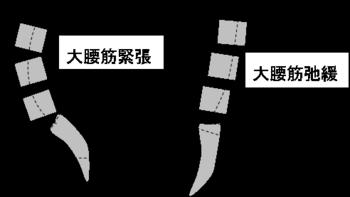 腰仙角.png