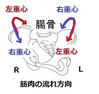 2記事〔イラスト1〕 - コピー - コピー.jpg