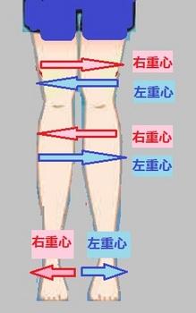 足の筋肉の流れ.jpg
